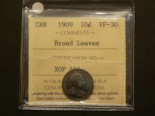 Canada,  1909 Ten 10 Cents,  Iccs Vf - 30 Broad Leaves 4159 photo