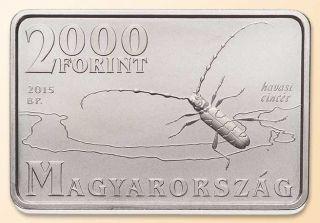 Hungary 2000 Forint 2015 Duna Ipoly National Park Insect Bug Tetragonal Bu photo