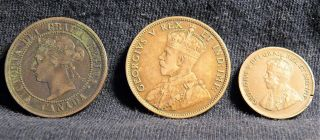 1888 - 1911 & 1931 Canadian Cents photo