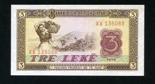 Albania 3 Leke 1976 P - 41 Unc Uncirculated Banknote photo