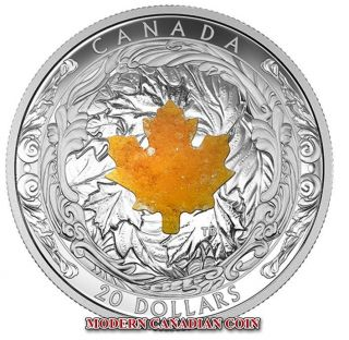 Canada 2016 $20 1 Oz Fine Silver Coin - Majestic Maple Leaves With Drusy Stone photo