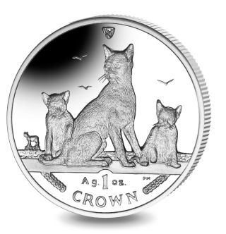 2016 Isle Of Man Havana Brown Cat Coin 1 Oz Silver Proof & photo