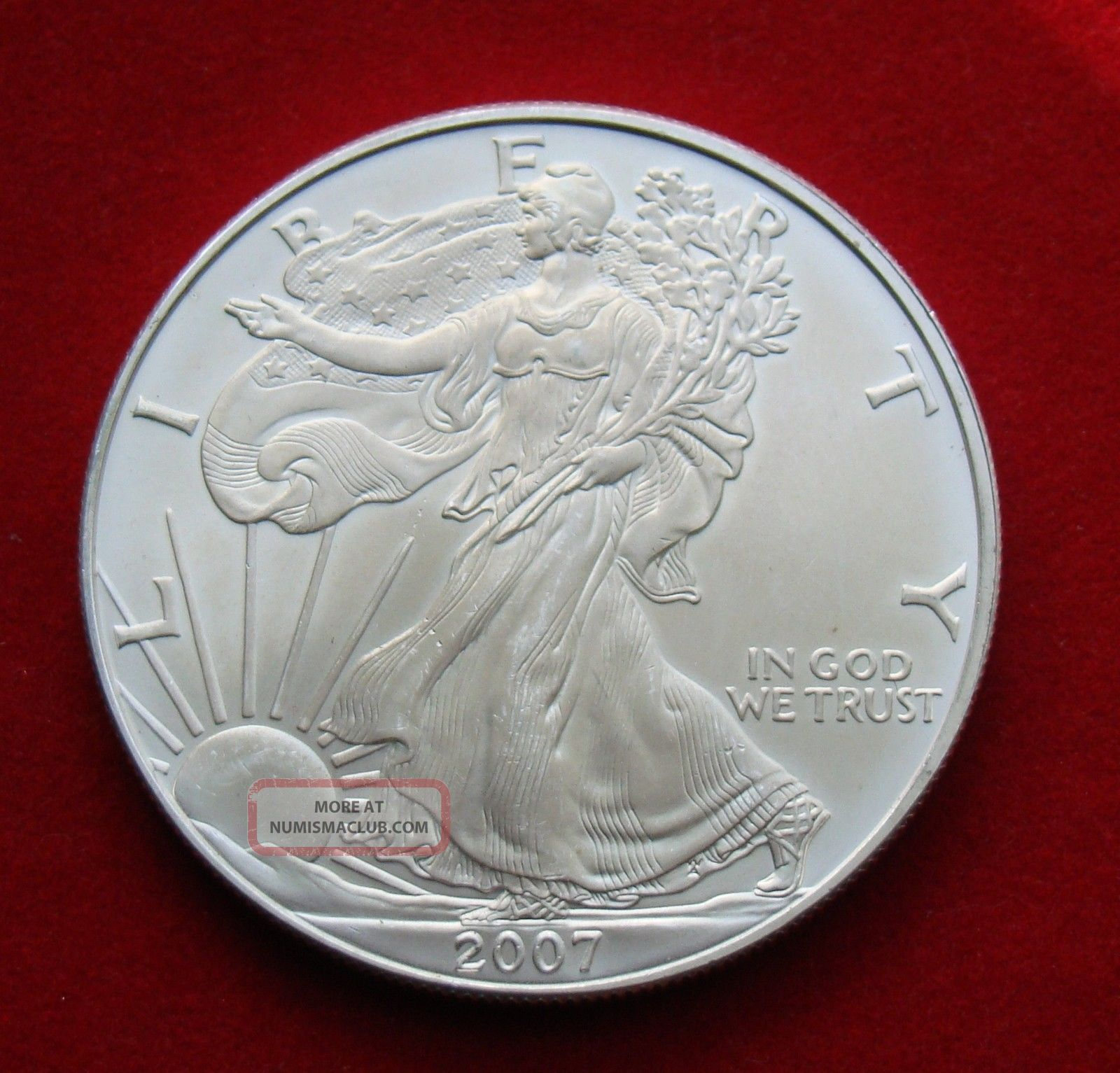 2007 Silver Dollar Coin 1 Troy Oz American Eagle Walking