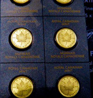 2014 Royal Canadian Maplegram - One Gram Gold Maple.  9999 Fine Gold photo