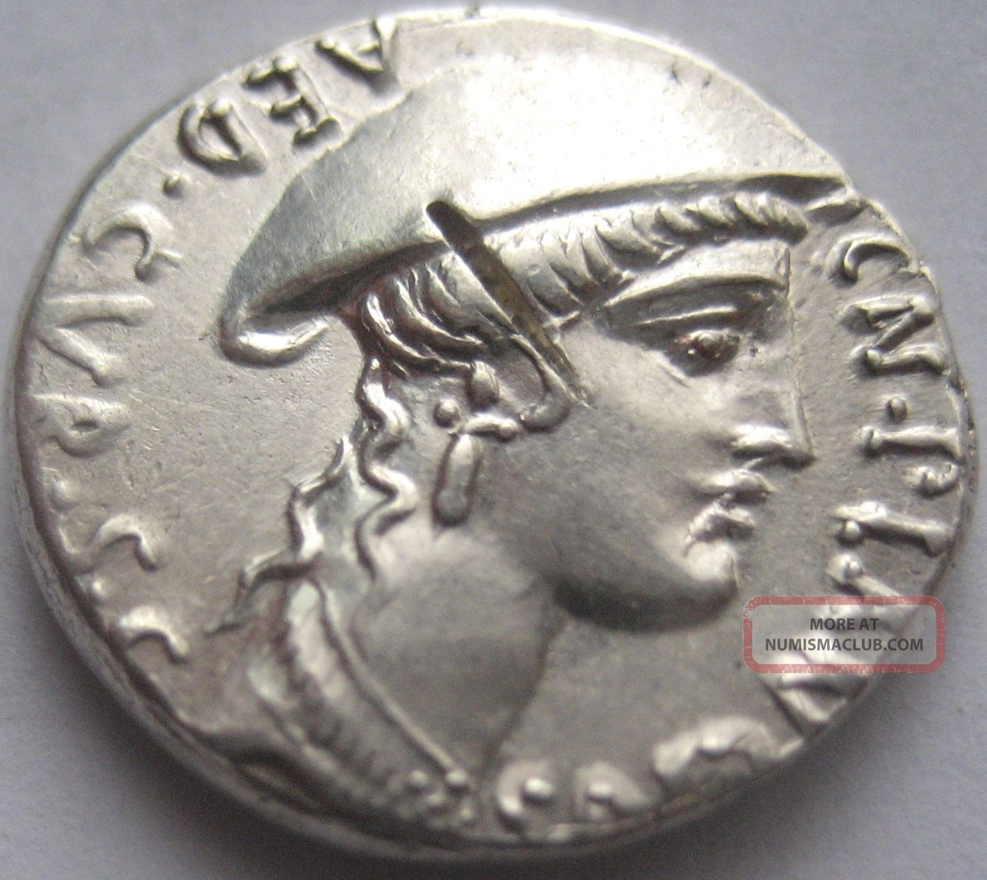 Rome Cn.  Plancius 55 B.  C.  Silver Denarius Very Rare And Coins: Ancient photo