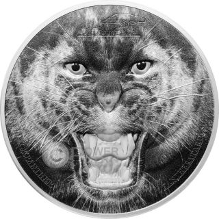 Black Panther Rare Wildlife 2 Oz Silver Coin 1500 Shillings Tanzania 2016 photo