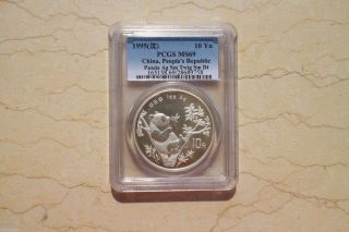 Pcgs Ms69 China 1995 1oz Silver Panda Coin (small Twig,  Small Date) photo