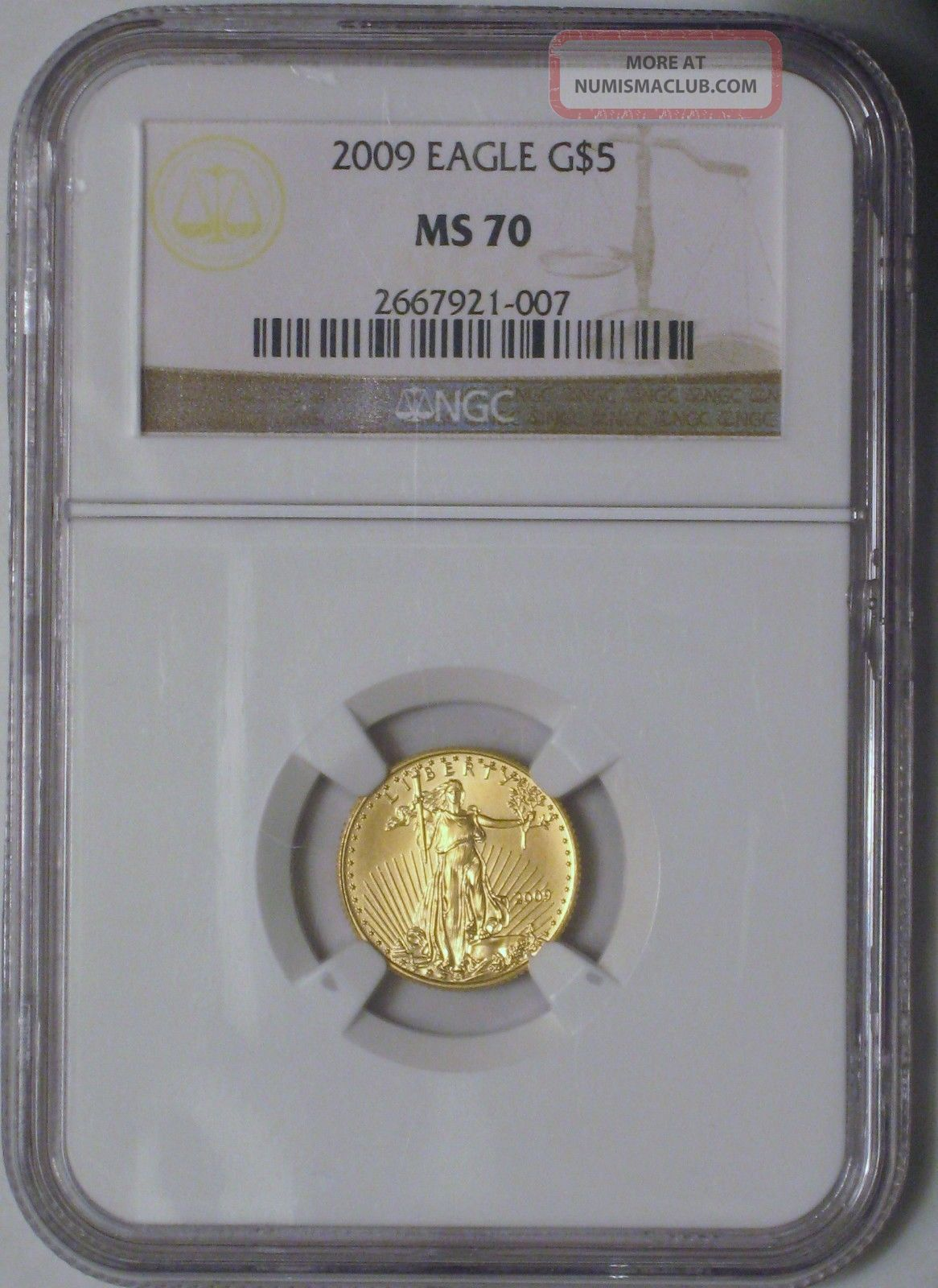 2009 $5 1 - 10 Oz Gold Eagle Ms - 70 Gold photo