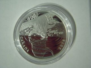 Canada 2016 $10 Reflections Of Wildlife: Otter,  Pure Silver Proof Coin photo