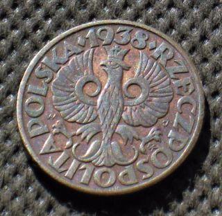 Old Coin Of Poland 5 Groszy 1938 Second Republic (ii Rzeczpospolita) (3) photo