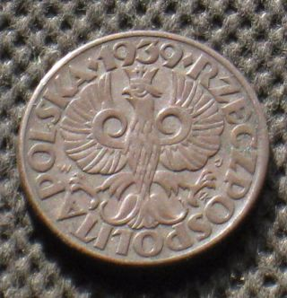 Old Coin Of Poland 5 Groszy 1939 Second Republic World War Ii (1) photo