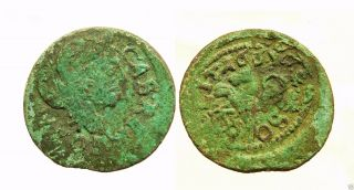 Lithuanian Medieval Copper Coin Solidus 166? Y.  (b817) photo