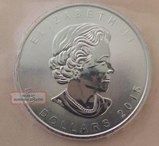 2015 1 Oz Palladium Maple Leaf Bu.  Comes In Protective Plastic Strip Bullion photo