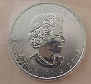 2015 1 Oz Palladium Maple Leaf Bu.  Comes In Protective Plastic Strip photo