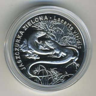Poland 2009 - 20 Zlotych Silver Coin - Green Lizard - Proof photo