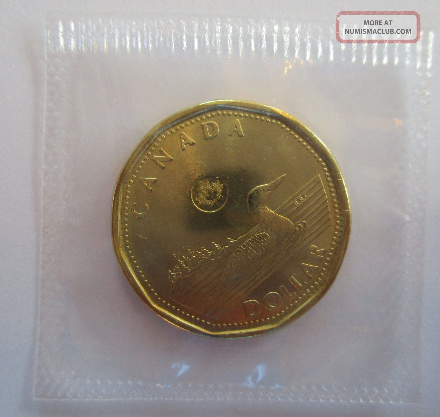 2017 Canada $1 Dollar Proof - Like Loonie Coin In Cello - B Coins: Canada photo