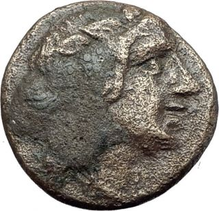 Amisos Pontus 100bc - Mithradates Vi The Great Time - Dionysus Greek Coin I61106 photo