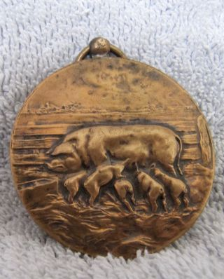 1928 Dutch Agriculture Pig Medal Mother And 5 Piglets photo