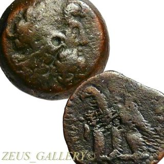Ptolemy Vi,  Viii Co - Rule Zeus Ammon,  2 Eagles Ancient Greek Bronze Coin Egyptian photo