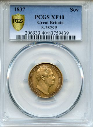 1837 Great Britain King William Iv Gold Sovereign Scarce,  Pcgs - Xf - 40. photo