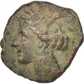 [ 505961] Carthage,  Zeugitane,  Bronze Ae16,  Bronze photo