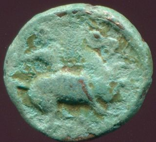 Greek Coin Philippos Macedonia Herakles Horseman 1,  40 G / 10,  89 Mm Grk1361.  10 photo