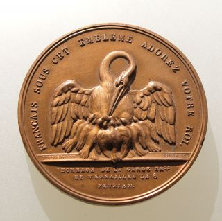 France - The National Guard Of Versailles Medal photo