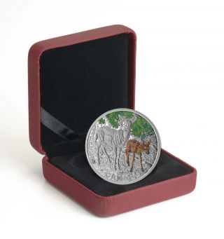 2015 $20 Baby Animals: White - Tailed Deer.  9999 Fine Silver Coin photo