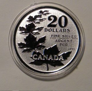 2011 Canada.  9999 Silver $20 Maple Leaf Coin In Capsule photo
