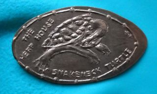 The Herp House Elongated Penny Orwell Oh Usa Cent Snakeneck Turtle Coin photo