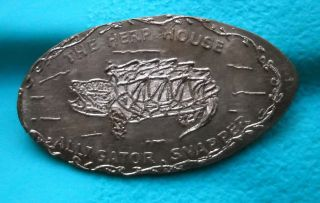 The Herp House Elongated Penny Orwell Oh Usa Cent Alligator Snapper Turtle Coin photo