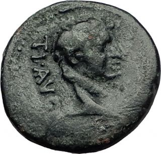 Tiberius 14ad Colonists Founding Parium With Oxen Ancient Roman Coin I59263 photo
