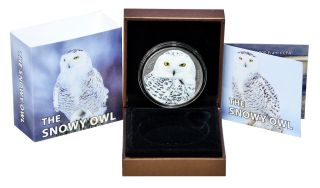 1000 Francs Burkina Faso 2016 - 1 Oz Snowy Owl 2016 photo