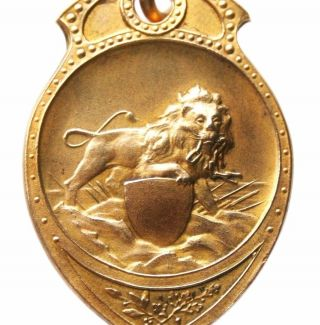 The Mighty Lion - Ancient Art Medal Pendant photo