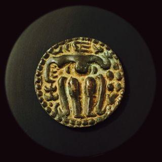 1200 - 1202 King Sahassa Malla,  Ancient Bronze One Massa Coin,  Ceylon,  Sri Lanka. photo
