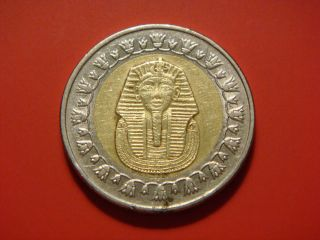 Egypt 1 Pound,  2008,  Ah1429,  Sphinx photo