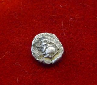 Mysia,  Kyzikos 5th C.  Bc Ar Obol Boar - Lion Incuse - Ex - photo