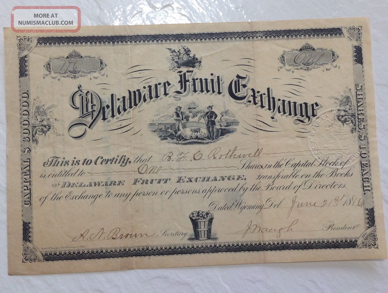 Delaware Fruit Exchange 1880s Stock Certificate Antique Rare Vintage Agriculture Stocks & Bonds, Scripophily photo