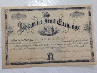 Delaware Fruit Exchange 1880s Stock Certificate Antique Rare Vintage Agriculture photo