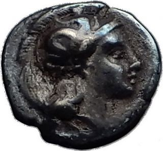 Thourioi Lucania 350bc Athena Bull Tunny Fish Ancient Silver Greek Coin I58956 photo