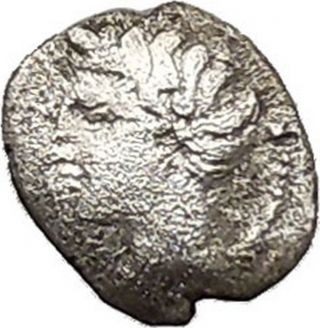 Panormos As Zis In Sicily 410bc Litra Silver Greek Coin Male & Man Bull I41457 photo