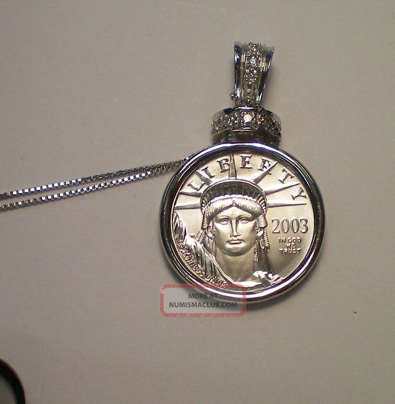 2013 1/10 Platinum Eagle With 14 K White Gold Chain / 6.  1 Grams Total Weight Platinum photo
