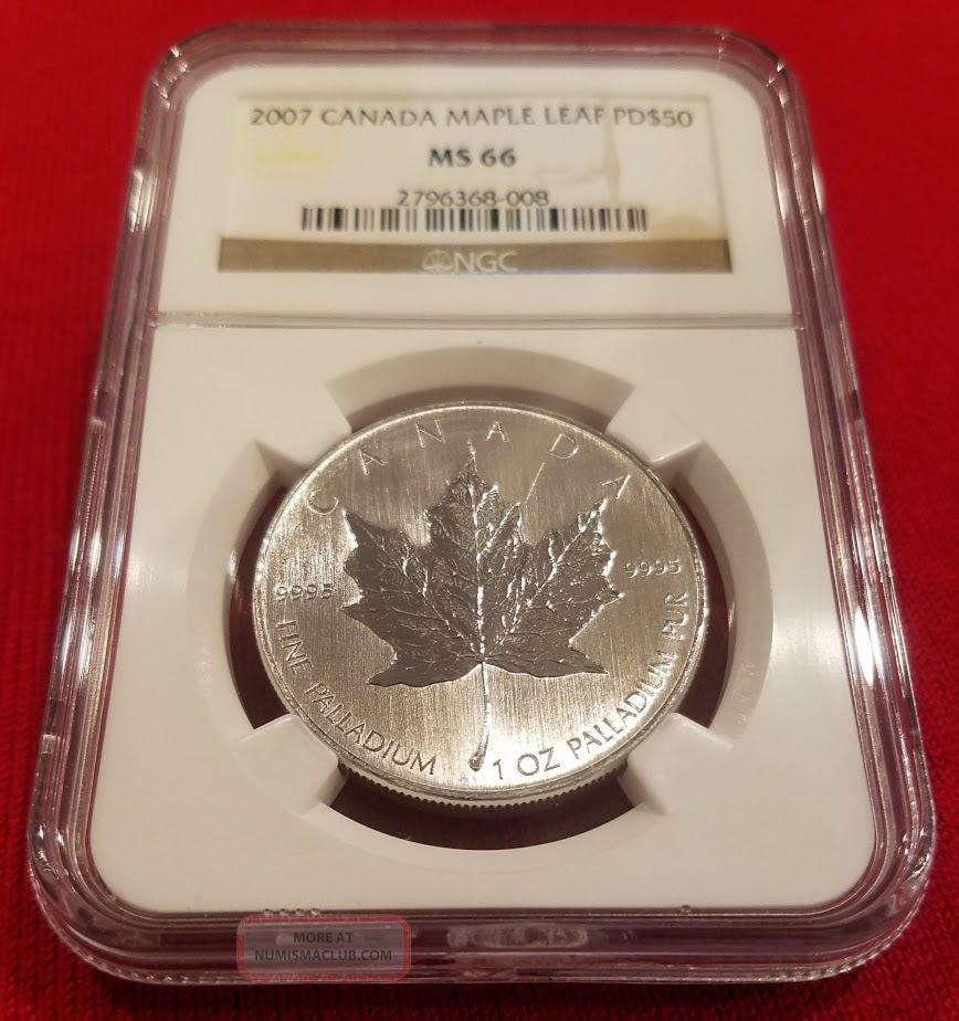 2007 Canada Palladium Maple Leaf Pd$50 Ms 66 Ngc,  No Longer Minted,  Very Rare Bullion photo