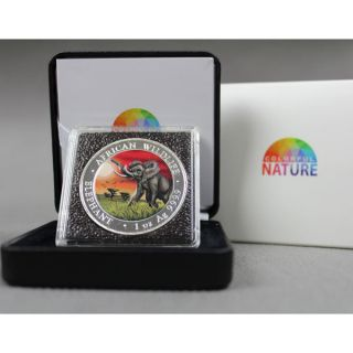 Somalia 2016 100 Shillings Colorful Nature Elephant 1 Oz Bu Silver Coin photo