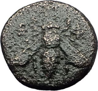 Ephesos Ephesus In Ionia 390bc Bee Stag Authentic Ancient Greek Coin I59538 photo