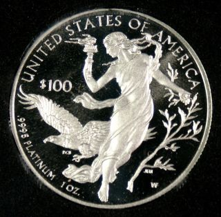 2016 $100 Proof 1 Oz.  Platinum Eagle photo