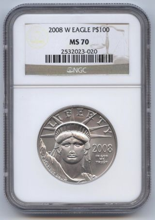 2008 - W Burnished 1 Oz.  Platinum Eagle $100 Ngc Ms70,  Statue Of Liberty photo