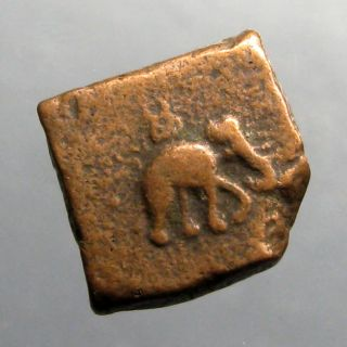 Taxila Ae 1.  5 Karshapana_welcomed Alexander Great_elephant,  Lion & Swastika photo
