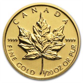 1/20 Oz Random Year Gold (canada) Canadian Maple Leaf $1 Bu photo