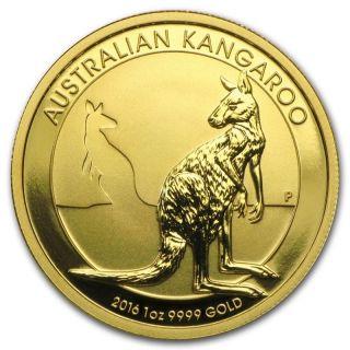 1 Oz Random Year (australia) Gold Australian Kangaroo $100 Bu 9999 photo